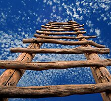 Kiva Ladder by LaRoach