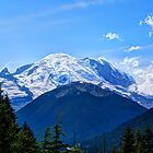 Beautiful Mount Rainier by Tori Snow