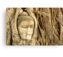 'Buddha Nature' Canvas Print