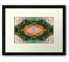 'Into The Dharma' Framed Print