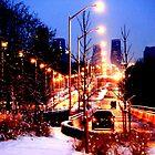 Burnhamthorpe bridge 1 by Wojtek  Jaskiewicz