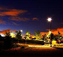 Park at night by Wojtek  Jaskiewicz