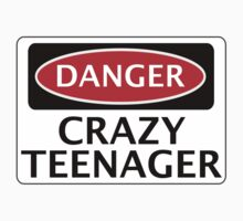 DANGER CRAZY TEENAGER FAKE FUNNY SAFETY SIGN SIGNAGE by DangerSigns