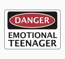 DANGER EMOTIONAL TEENAGER FAKE FUNNY SAFETY SIGN SIGNAGE by DangerSigns