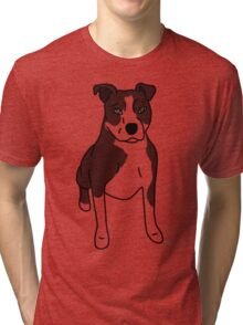 Pit Bull - with markings Tri-blend T-Shirt