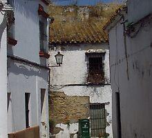 Rustic Charm, Carmona, Andalusia by wiggyofipswich