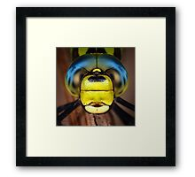 Dragonfly close-up Framed Print