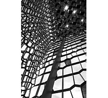 Harpa Photographic Print