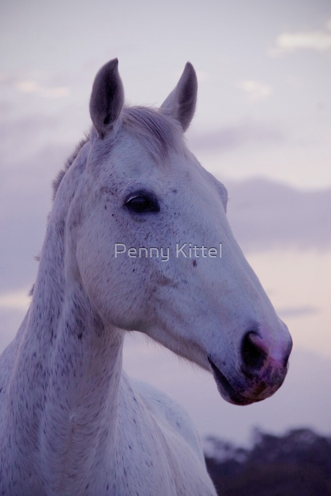 A whisp of smoke by Penny Kittel