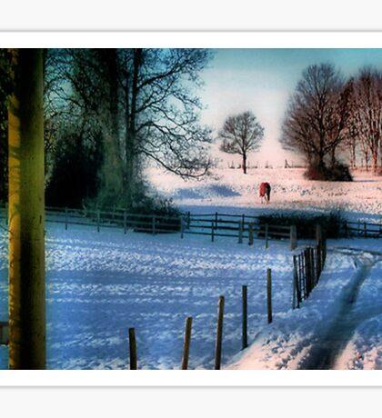 The Snow Fields Sticker