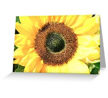 Some Flower! Greeting Card