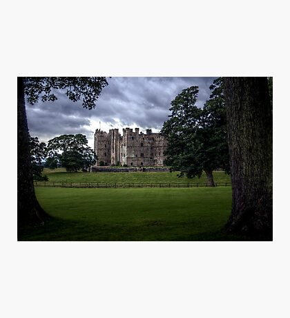 Raby Castle Trees View Photographic Print