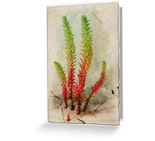 At the dune Greeting Card