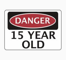 DANGER 15 YEAR OLD, FAKE FUNNY BIRTHDAY SAFETY SIGN by DangerSigns