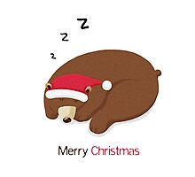 Merry Christmas, Bear Photographic Print