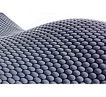 The Bullring Photographic Print
