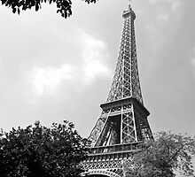 La Tour Eiffel by Alex Cassels