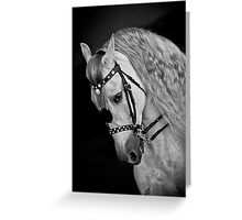 Andalusian D9098 Greeting Card