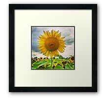 Stand Proud Framed Print