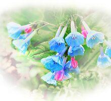 Misty Blue by Nadya Johnson