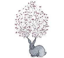 Blossom Heart Bunny Photographic Print