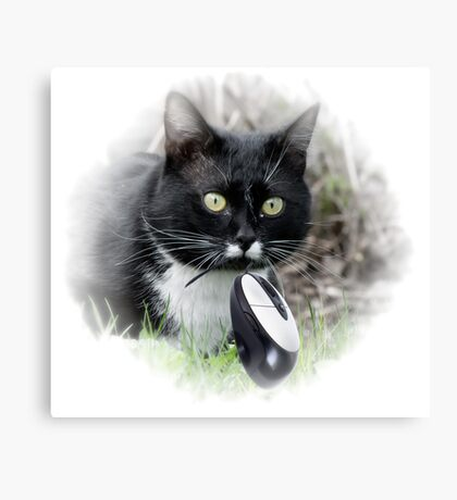 Black cat catching computer mouse Canvas Print