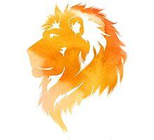 aquarell lion  Photographic Print