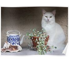 Still Life With Cat Poster