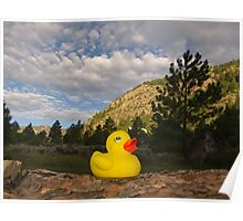Rubber Ducky Sunrise Poster