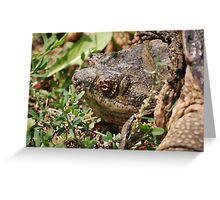 Snapping Turtle Head Greeting Card