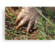 Snapping Turtle Foot Metal Print