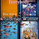 DAC Challenge Win Banner by billyboy