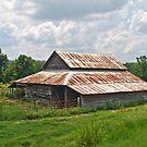 Down on the Farm by Lisa G. Putman