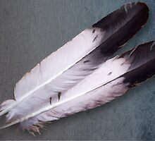 RB_BS_0194 Golden Eagle Prayer Feathers by raven777