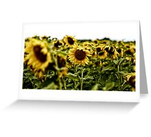Citron Greeting Card
