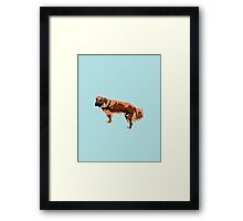 Baby Blue Mutt Framed Print