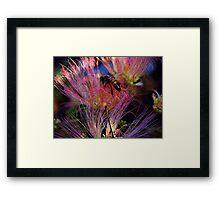 Fire Bee Framed Print