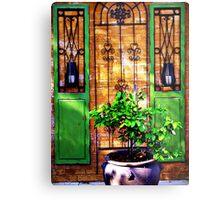 Doors & more... Metal Print