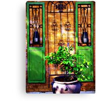 Doors & more... Canvas Print