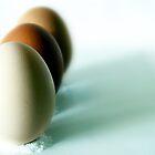 Fresh Eggs by David Mellor