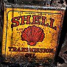 Old SHELL Can - Mt Wilson NSW Australia by Bev Woodman