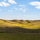 Mongolian Steppe by Ruben D. Mascaro