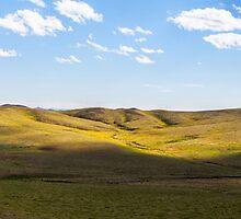 Mongolian Steppe by Ruben D. Mascaro
