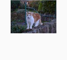Ginger And White Cat Unisex T-Shirt