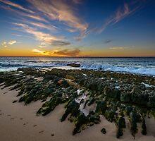 A Walk On The Beach by Matt Mason