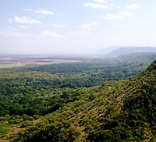 View from the rift valey rim down across Lake Manyara   -  Tanzania  by john  Lenagan