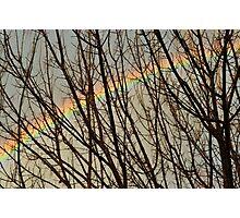 rainbow framework Photographic Print