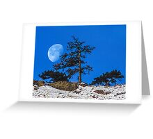 Moon Tree Greeting Card