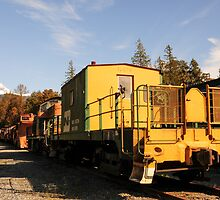 Yellow Old Train Wagon by MaluC