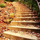 Enchanted Staircase by ElleEmDee
